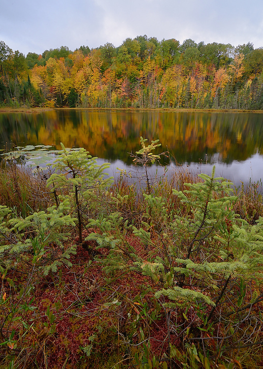 Hiawatha National Forest<br />