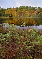 Hiawatha National Forest<br /> Michigan's Upper Peninsula