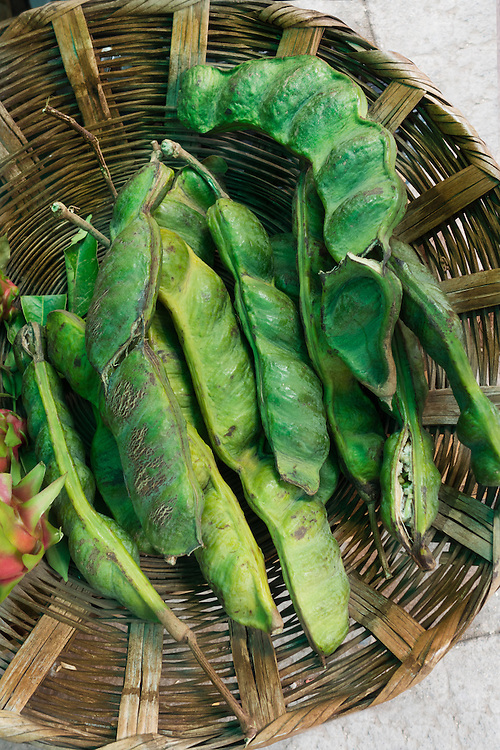 Inga edulis (eng. ice-cream-bean, Joaquiniquil, Mex. cuaniquil, guama or guaba