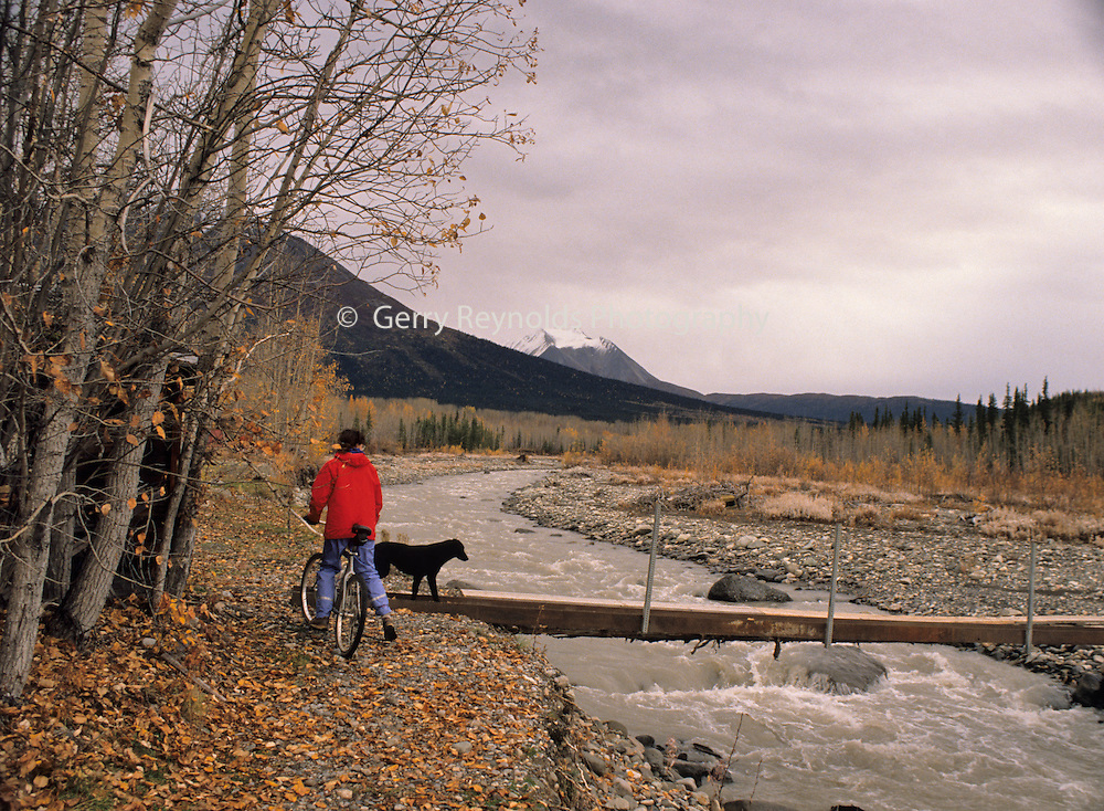 Mountain Biking, Bicycling, Fall, Autumn, Wrangell St. Elias, Wrangell St. Elias National Park, McCarthy, Kennicott, McCarthy Lodge, Alaska