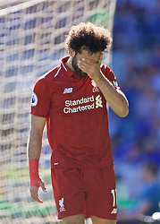 CARDIFF, WALES - Saturday, April 20, 2019: Liverpool's Mohamed Salah looks dejected after missing a chance during the FA Premier League match between Cardiff City FC and Liverpool FC at the Cardiff City Stadium. (Pic by David Rawcliffe/Propaganda)