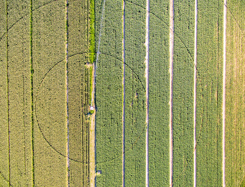 An aerial view of fields with rows of various crops and a pivot irrigation system at a local Maryland farm.