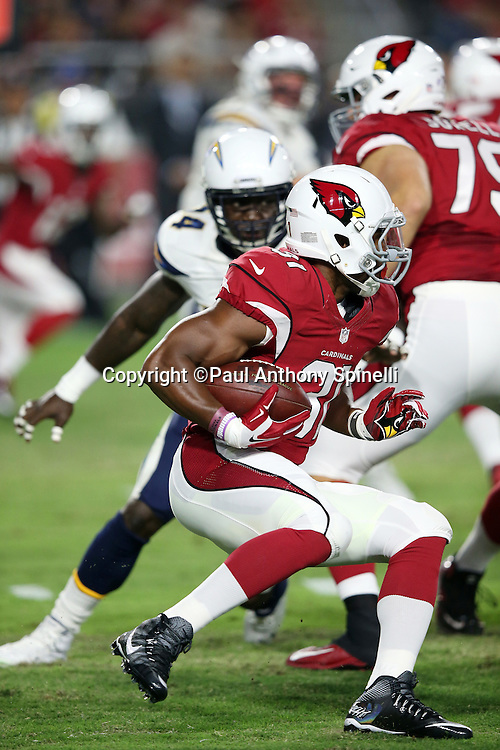Arizona Cardinals running back David Johnson (31) runs the ball in the first quarter during the 2015 NFL preseason football game against the San Diego Chargers on Saturday, Aug. 22, 2015 in Glendale, Ariz. The Chargers won the game 22-19. (©Paul Anthony Spinelli)
