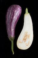 Zebra Eggplant (Solanum).