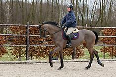 Training met Maikel Van der Vleuten 2009
