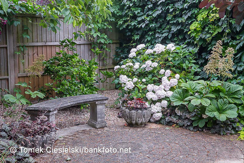 Old style stony bench set in a shady corner