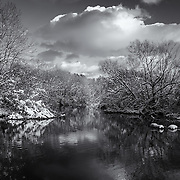 &quot;Afternoon in Shades of Gray&quot; <br />