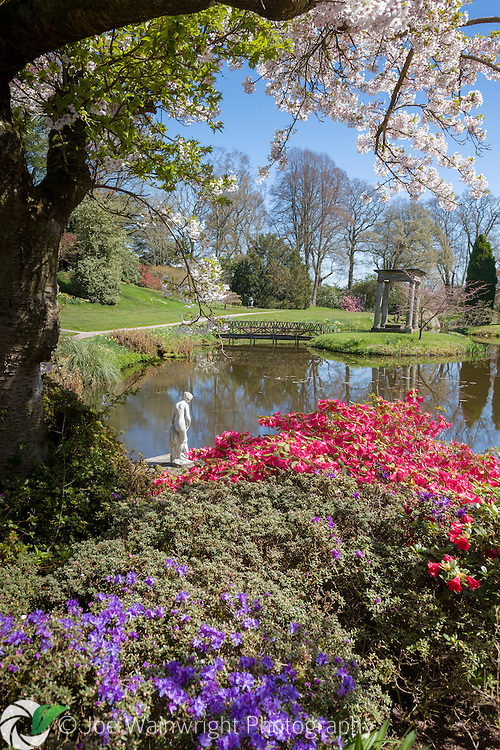 Photographed in early May, the Temple Garden at Cholmondeley Castle, Cheshire, is bathed in spring sunshine.