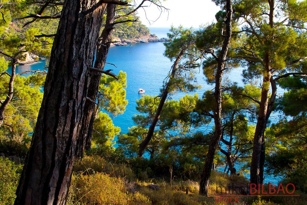 Forest and coastal landscape. Kabak Valley. Lycian Way.  Mugla province, Aegean coast, Turkey.