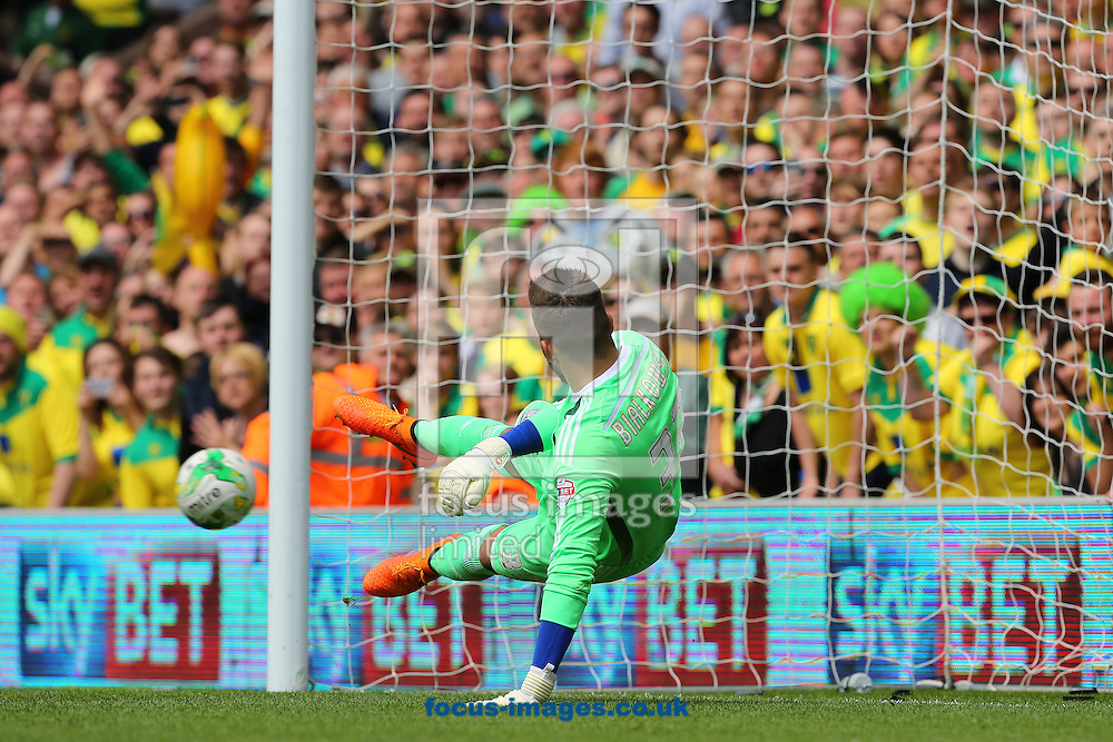 Bartosz Bialkowski of Ipswich Town dives in vain as Wesley Hoolahan of Norwich City scores from the penalty spot to make it 1-0 during the Sky Bet Championship match at Carrow Road, Norwich<br /> Picture by Richard Calver/Focus Images Ltd +44 7792 981244<br /> 16/05/2015