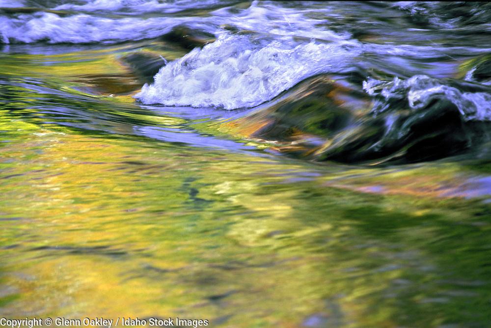 Water reflecting fall aspens.