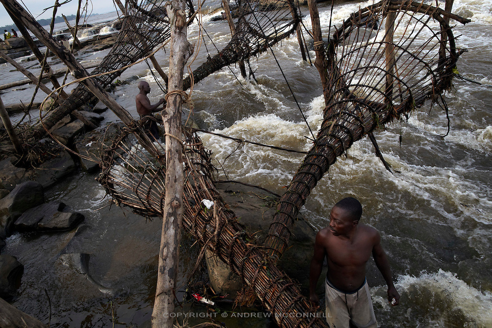 Fishermen check their baskets at Wagenia Falls (or Boyoma Falls), near Kisangani, DR Congo. The nets are checked twice a day, in the early morning and late afternoon.