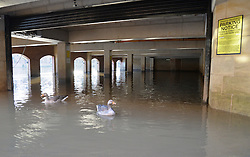 © Licensed to London News Pictures. 06/03/2016. York, UK. Geese swim in a hotel car park left flooded by the River Ouse in York city centre. Photo credit : Anna Gowthorpe/LNP