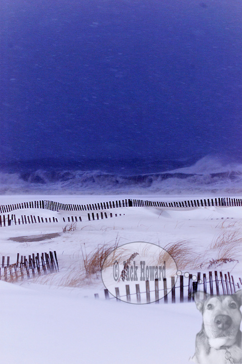 02/15/2005 - Belmar, NJ - Snow falls on the beach in Belmar during the President's Weekend Storm of 2003 . ..Jack Howard photograph