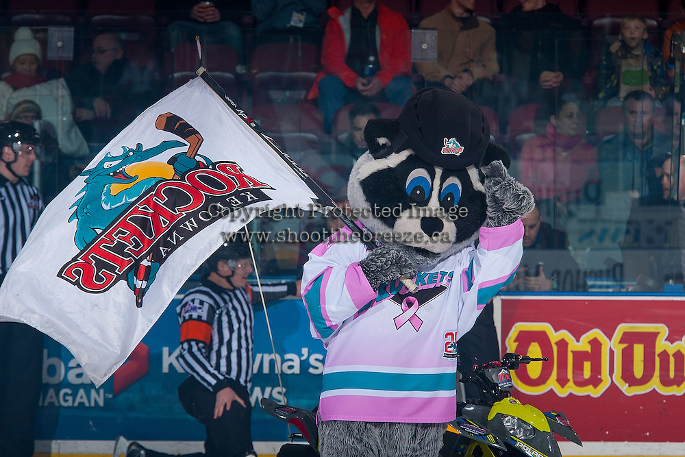 KELOWNA, CANADA - JANUARY 4: Rocky Racoon, the mascot of the Kelowna Rockets stands on the ice against the Spokane Chiefs on January 4, 2017 at Prospera Place in Kelowna, British Columbia, Canada.  (Photo by Marissa Baecker/Shoot the Breeze)  *** Local Caption ***