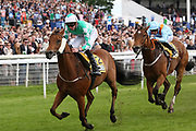 FIRMAMENT (12) ridden by James Doyle and trained by David OMeara winning The JCB Handicap Stakes over 7f (£40,000)  during the MacMillan Charity Raceday held at York Racecourse, York, United Kingdom on 15 June 2019.