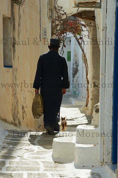 Grece, Cyclades, Santorin, chat dans les rues de Oia // Greece, Cyclades, Santorini, cat on the Oia street