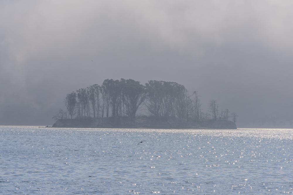 Nicks Cove, Tomales Bay, California