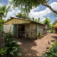 The home of Margarita, her husband and their seven children in the la Cubana area of San Pedro Province, Dominican Republic, September 12, 2017. The area was not badly damaged by Hurricane Irma, though it is prone to diseases, especially now in the rainy season with increased rainfall during the hurricane. Several areas with stagnant water are breeding grounds for mosquitos, increasing cases of dengue, chikungunya, zika and others. stands with two of her seven children in front of their house in the la Cubana area of San Pedro Province in the Dominican Republic, September 12, 2017. The area was not badly hit by Hurricane Irma, though it is prone to diseases, especially now in the rainy season with increased rainfall during the hurricane. Several areas with stagnant water are breeding grounds for mosquitos, increasing cases of dengue, chikungunya, zika and others.