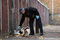 "© Licensed to London News Pictures. 07/11/2018. White City, London, UK. ""Lotte"" a police dog and her handler at the scene of a serious assault in west London. A teenage boy became the latest victim in a spate of knife attacks across the capital. The boy was stabbed this afternoon on Willow Vale, off Uxbridge Road in White City. He is understood to be seriously ill in hospital after being found with life threatening injuries. Within two hours in a separate incident, a man was stabbed in Hackney, east London. Photo credit Guilhem Baker/LNP"