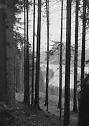 Austria, 1925