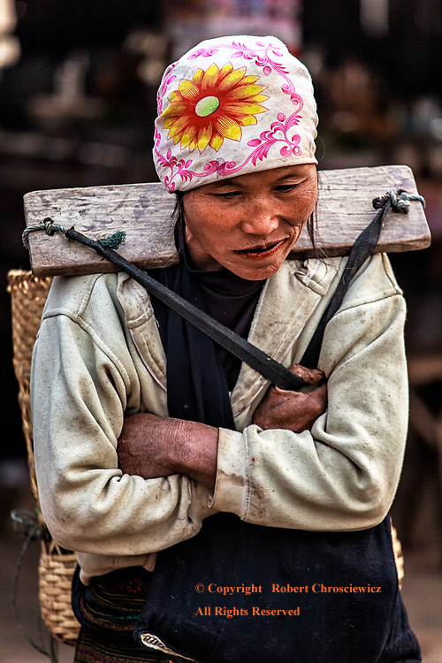 Life's Burden: A woman in a brightly coloured head scarf leans forward as she bears the weight of her wares, borne by a wooden yoke, Muang Sing morning market, Laos.