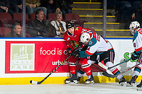 KELOWNA, CANADA - MARCH 3: Devin Steffler #4 of the Kelowna Rockets checks Mason Mannek #26 of the Portland Winterhawks into the boards on March 3, 2019 at Prospera Place in Kelowna, British Columbia, Canada.  (Photo by Marissa Baecker/Shoot the Breeze)