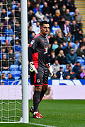 Vito Mannone (1) of Reading during the EFL Sky Bet Championship match between Reading and Ipswich Town at the Madejski Stadium, Reading, England on 28 April 2018. Picture by Graham Hunt.
