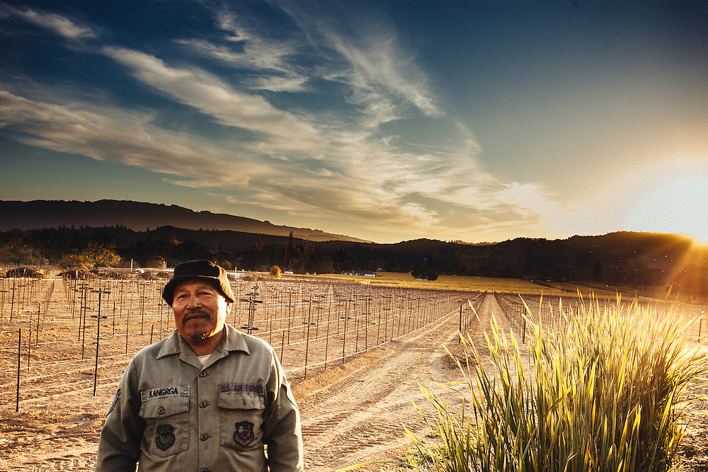 A vineyard worker enjoying the warmth of an early sunset.