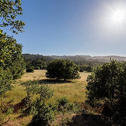Portola Valley, California