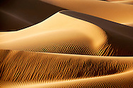 Desert sand dunes in the Sahara at Erg Lihoudi, M'hamid, Morocco.