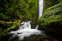 Gorton Creek Falls in the Columbia River Gorge as it falls from the high surrounding cliffs into the canyon below.