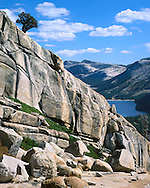Lake Tenaya Seen From A Nearby Mountain, Yosemite National Park, California