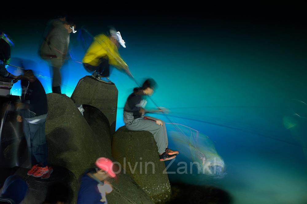 Local fisherman catching the Bioluminescent Firefly Squid (Watacenia sintillans) ( ほたるいか , hotaru-ika ) along the shore of Toyama Bay, in the central Japan Sea.Toyama, Japan