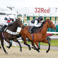 Whispering Warrior and Jim Crowley winning the 1.00 race