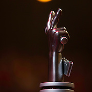 NLD/Hilversum/20140221 - Finale The Voice Kids 2014, The Voice Award