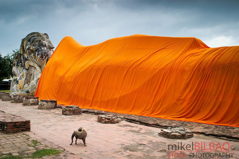 Reclined Buddha in Wat Lokayasutha. Ayutthaya, Thailand.