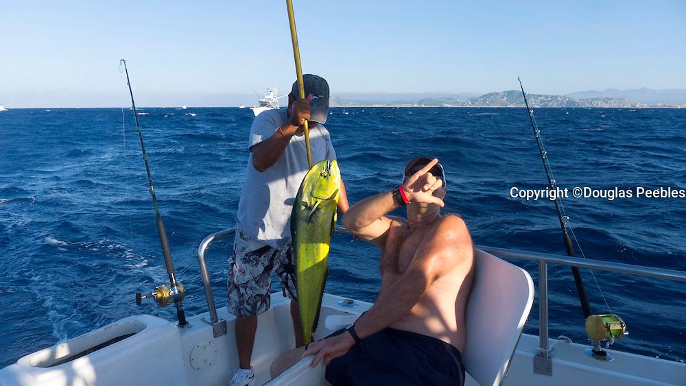 Dorado, Mahi Mahi, Fishing, Cabos San Lucas, Baja, Mexico