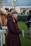 HILARY SCUTTER, Hennessy Gold Cup, The Racecourse Newbury. 30 November 2013.