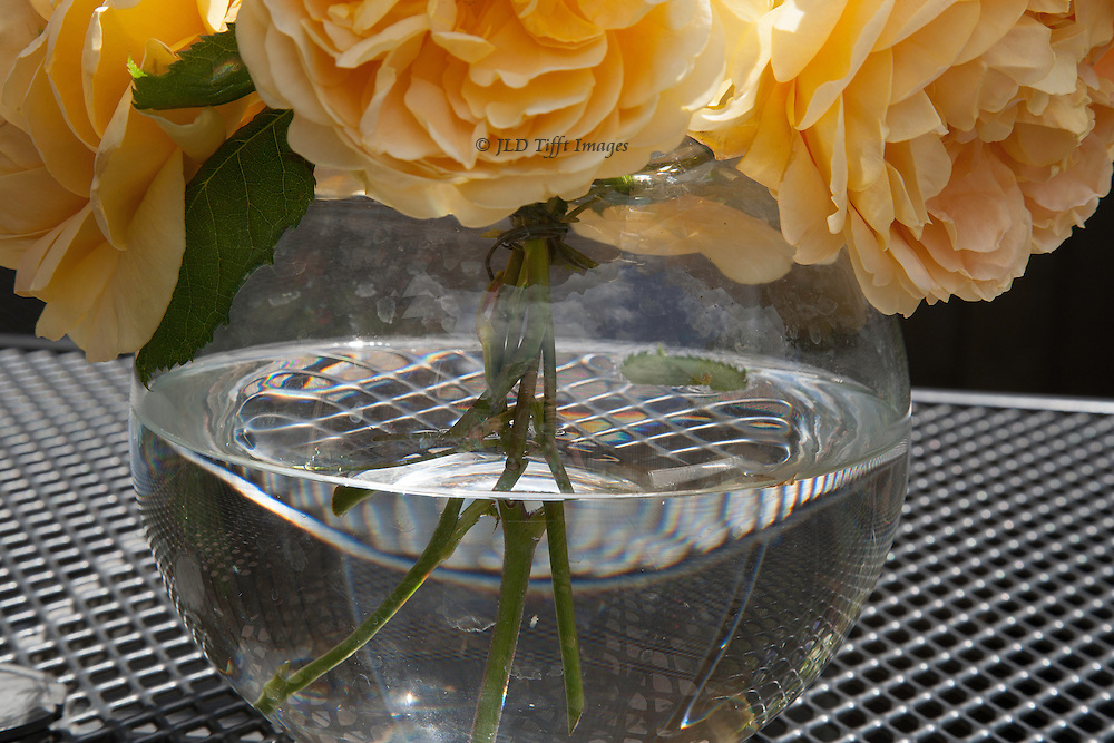 Close up view of the bowl, blooms above, on a table of woven ironwork.
