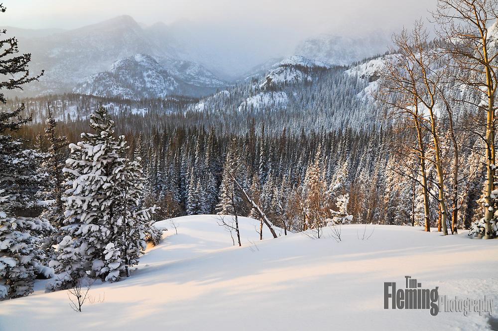 Fresh snowfall in the Colorado Rocky Mountains