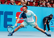 Jo-Wilfred Tsonga during the final of the Erste Bank Open at Wiener Stadthalle, Vienna, Austria.<br /> Picture by EXPA Pictures/Focus Images Ltd 07814482222<br /> 30/10/2016<br /> *** UK &amp; IRELAND ONLY ***<br /> EXPA-PUC-161030-0387.jpg
