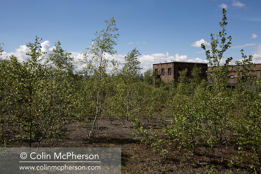 'Untitled, 2014' from the project 'The Fall and Rise of Ravenscraig' by photographer Colin McPherson.<br /> <br /> The photograph shows a disused administration building on the site of the former steelworks at Ravenscraig.<br /> <br /> This project, photographed in 2014, looks at the topography of the post-industrial landscape at Ravenscraig, the site until its closure in 1992 of the largest hot strip steel mill in western Europe. In its current state, Ravenscraig is one of the largest derelict sites in Europe measuring over 1,125 acres (4.55 km2) in size, an area equivalent to 700 football pitches or twice the size of Monaco. It is currently being developed with a mix of housing, retail and the home of South Lanarkshire College and the Ravenscraig Regional Sports Facility.