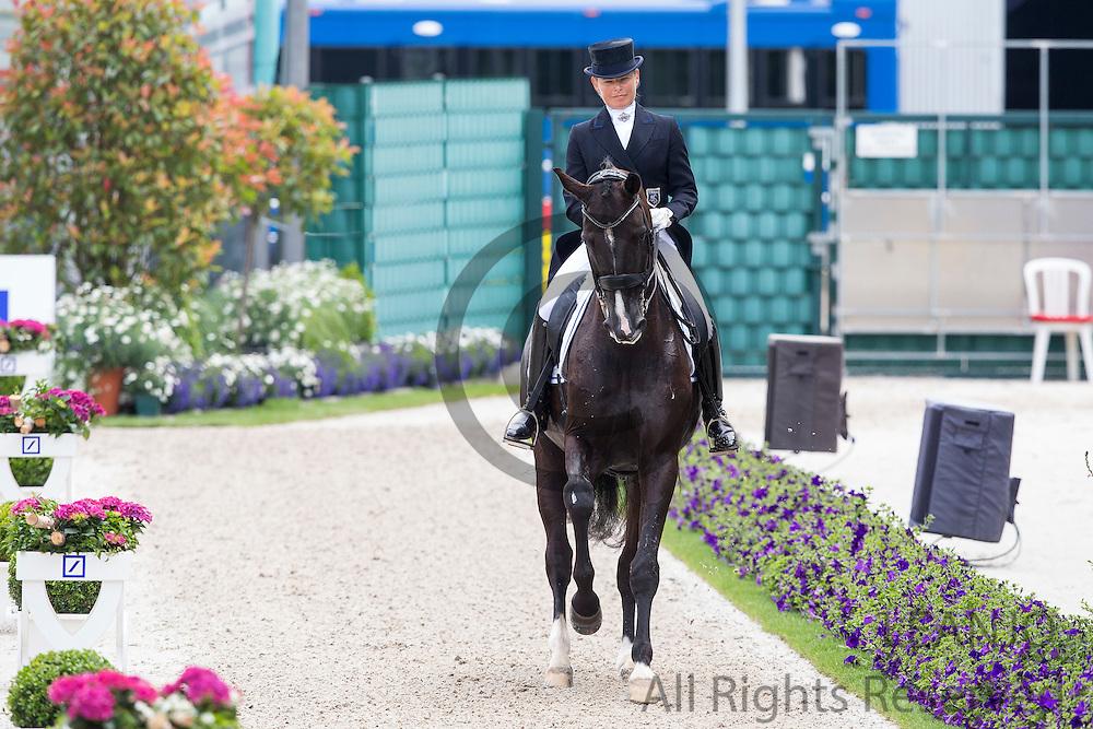 Mikaela Lindh - Skovlunds Mas Guapo<br /> World Equestrian Festival, CHIO Aachen 2013<br /> © DigiShots