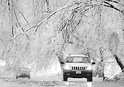 A motorist passes below low hanging branches of an ice-laden tree on a street in Kansas City, Mo., Thursday, Jan 31, 2002. Freezing rain left a heavy coating of ice on trees and power lines resulting in loss of power to large parts of the metro Kansas City area. (AP Photo/Charlie Riedel)