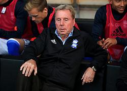 Birmingham City manager Harry Redknapp before the Sky Bet Championship match at the Pirelli Stadium, Burton.