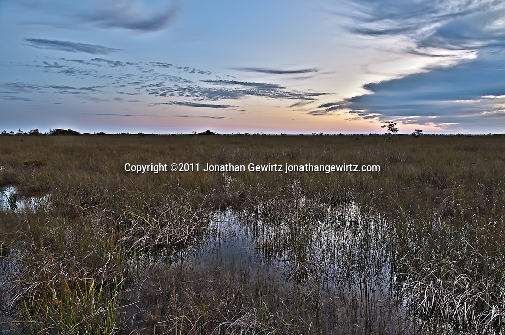 The Florida Everglades during rainy season, around sunrise, looking East from the Pa-hay-okee Overlook. WATERMARKS WILL NOT APPEAR ON PRINTS OR LICENSED IMAGES.