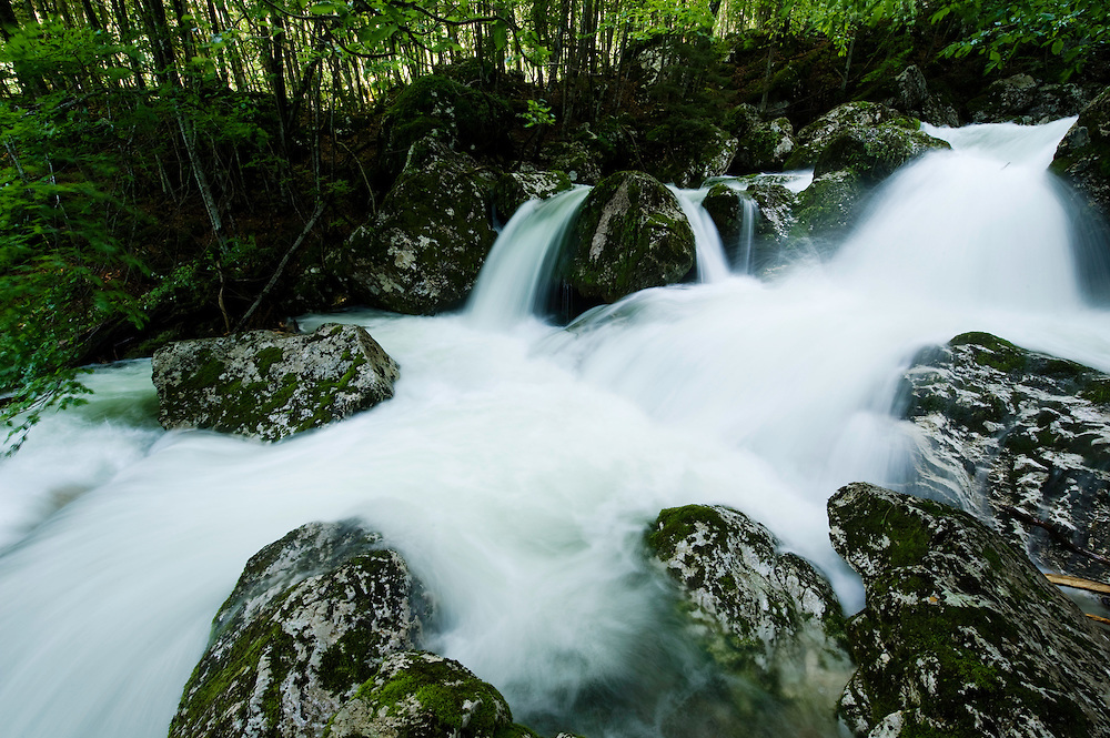 River Lepenjica, cascades, moss-grown stones in water<br /> Triglav National Park, Slovenia<br /> June 2009