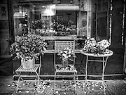 """Flower shop """"au nome de rose"""""""