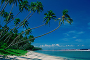 Beach, South Pacific<br />